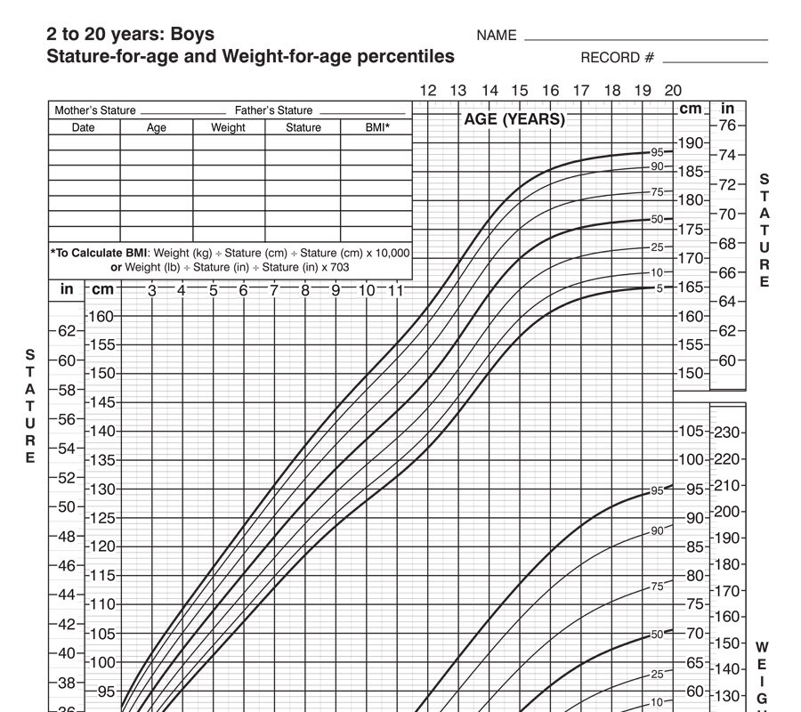 BMI – 2 to 20 Years (Boys)