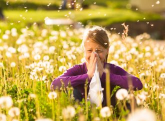 Allergies and Hay Fever (Child)