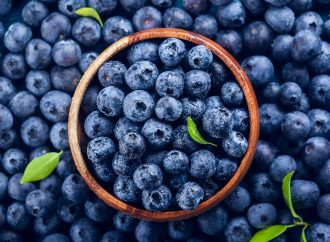 Bilberry