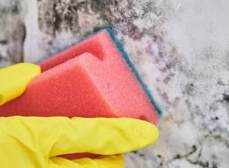 Health Tip: Getting Rid of a Mold Problem
