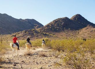 Health Tip: Horseback Trail Riding Safety